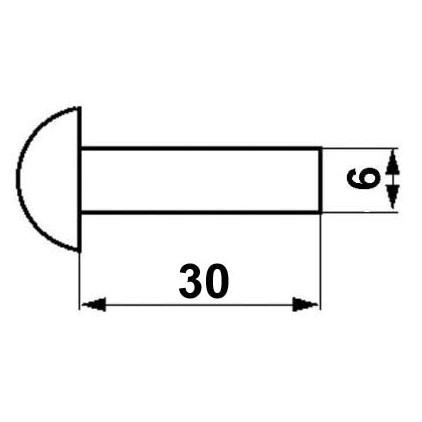 RIVET 6x30 (paquet de 500g)